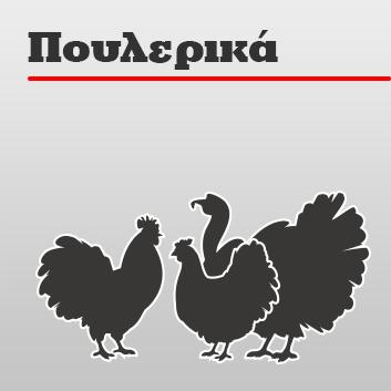 Σπέντζος - Πουλερικά